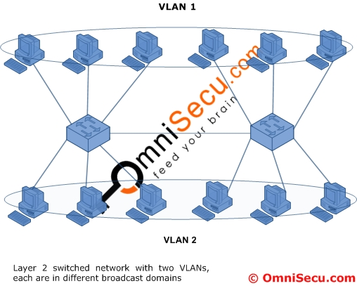 Multiple broadcast domain VLAN