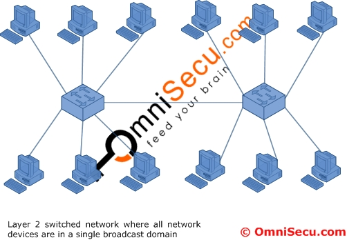 Single Broadcast Domain LAN