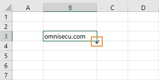 Excel extend or fill data mouse pointer shape