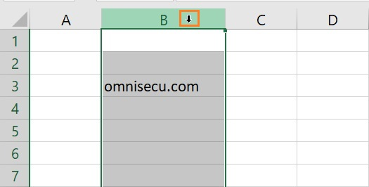 Excel select entire column mouse pointer