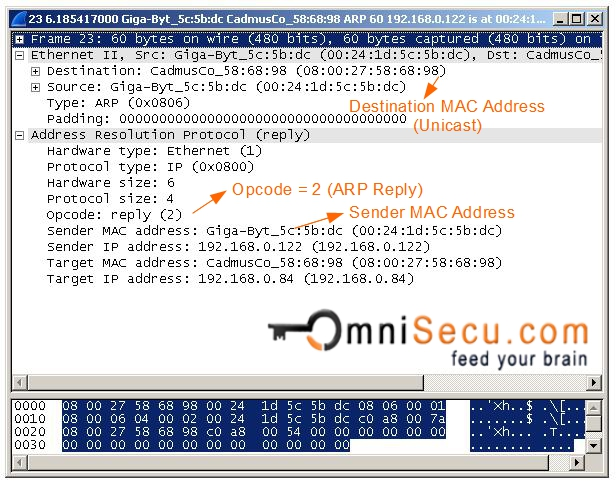 ARP Reply wireshark capture