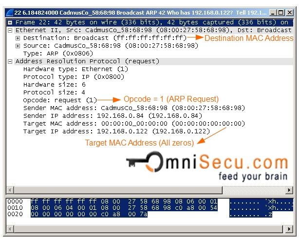 ARP Request Wireshark Capture