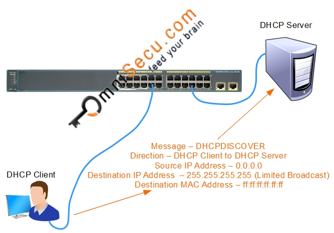 DHCP Discover Message Theory