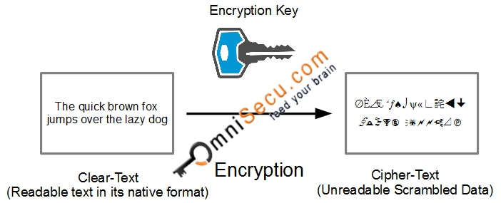 What are the terms Encryption, Decryption, Clear-Text and