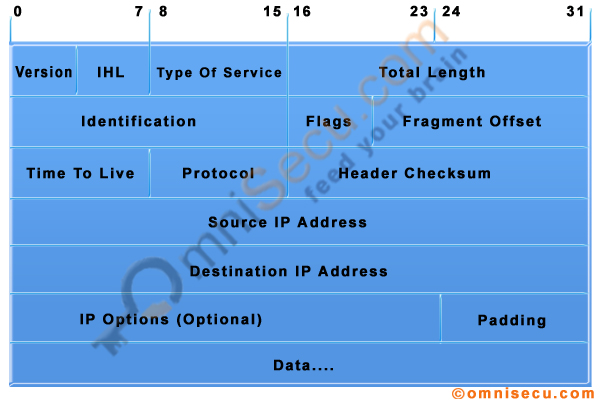 IPv4 Datagram Header Structure