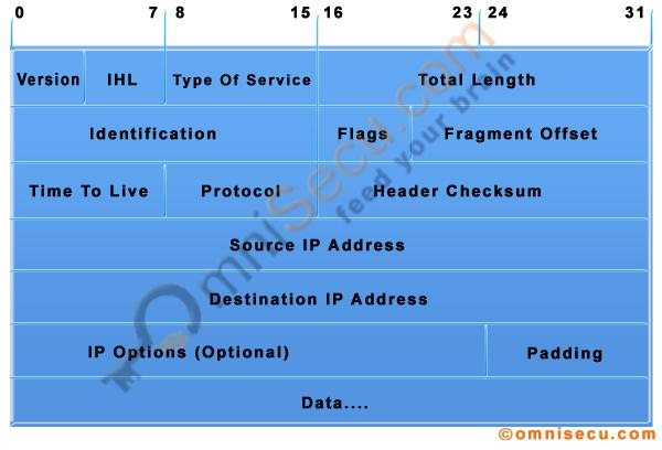 IPv4 datagram header