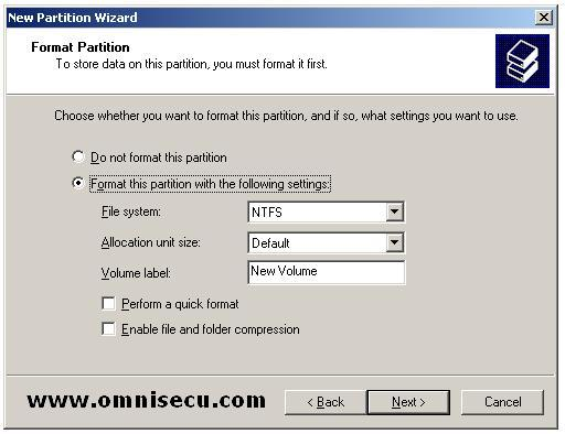 Logical drive new partition wizard format partition