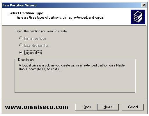 Logical Drive new partition wizard select partition type